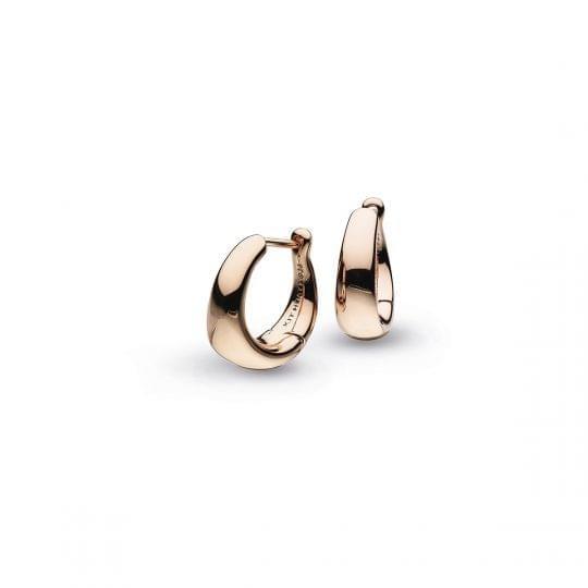 5bbec4595c6a3a Daisy London English Daisy Stud Earrings 10mm | Earrings | Jenny ...